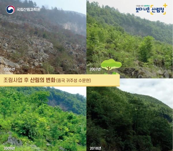 중국 귀주성 수문현_조림사업 후 산림의 변화 /자료제공=국립산림과학원